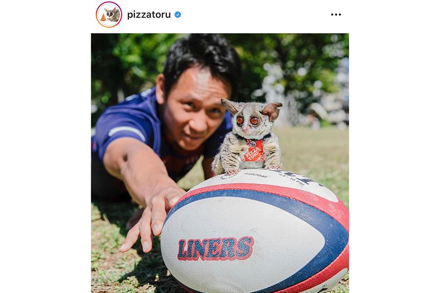 ラグビー日本代表を応援するキュートな一枚が話題に…ピザトルが必勝祈願