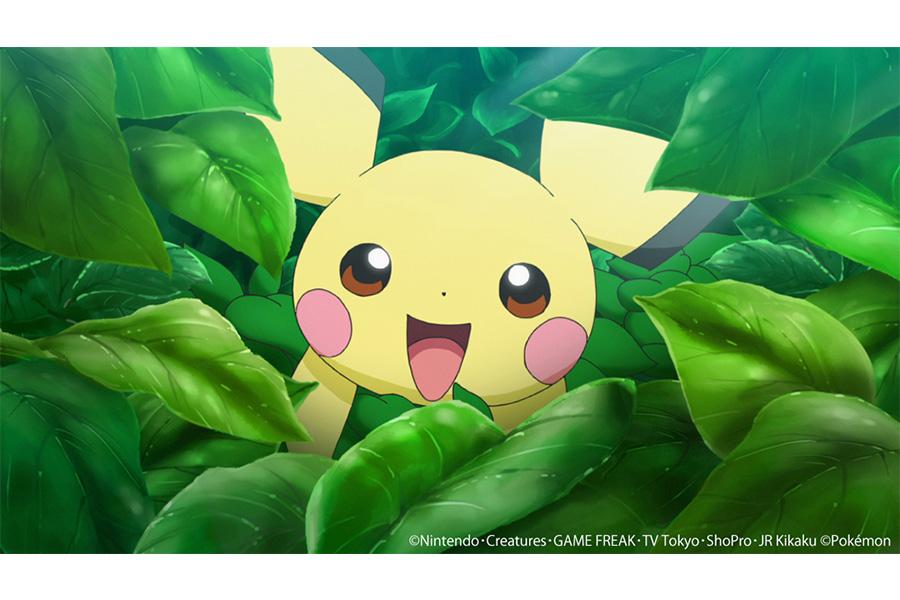 「ピカチュウ誕生!」場面カット  (C)Nintendo・Creatures・GAME FREAK・TV Tokyo・ShoPro・JR Kikaku (C)Pokémon