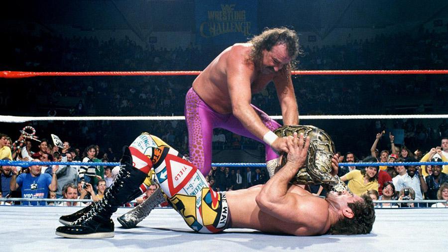 対戦相手にニシキヘビを使うジェイク・ロバーツ (C)2020 WWE, Inc. All Rights Reserved.