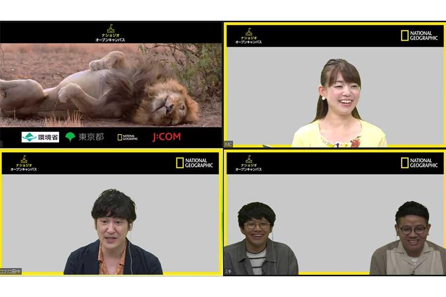 ココリコ田中の動物愛が炸裂「カメラが回っていないときにも…」知識の源泉明かす