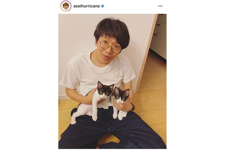 「ミキ」亜生と、愛猫の「兆猛」と「丹猛」【写真:インスタグラム(@aseihurricane)】