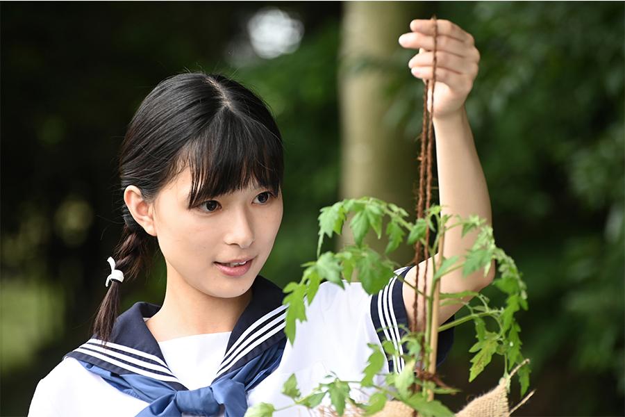 「べっぴんさん」以来のNHKドラマの主演を務めた芳根京子【写真:(C)NHK】