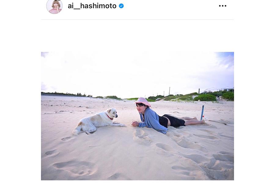 犬と一緒に浜辺で寝そべる橋本愛【写真:インスタグラム(@ai__hashimoto)より】