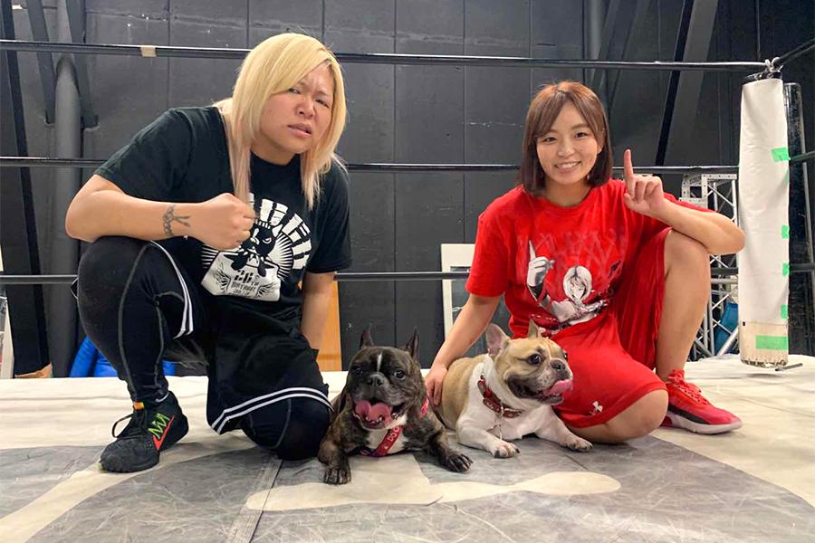 愛犬同士も合体した世志琥(左)とSareee