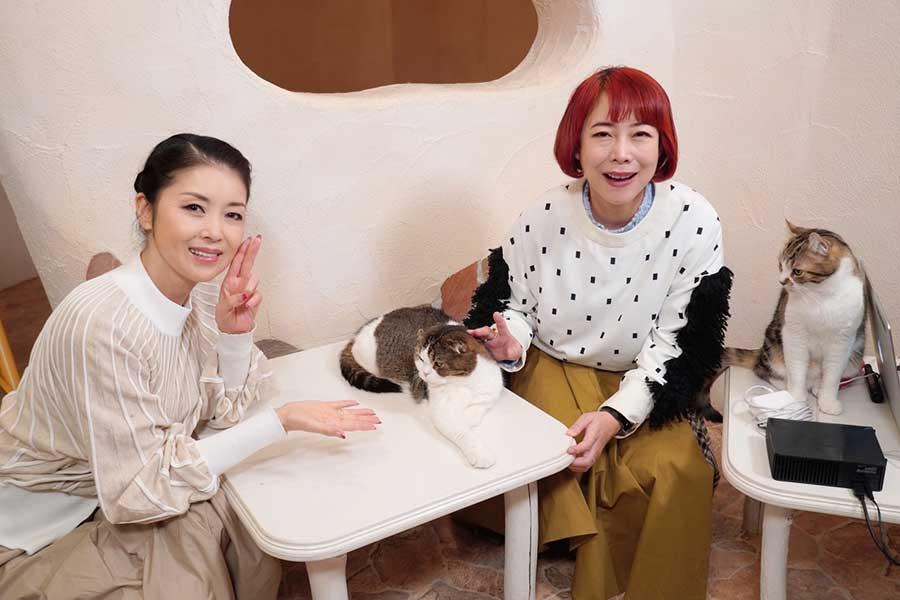 保護猫で話題の藤あや子、ペット探し番組MC就任「すべての動物好きに見てほしい」