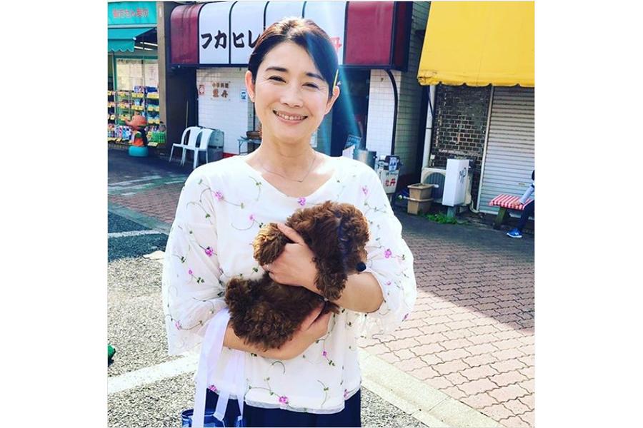 石田ひかり、連休明けに作ったサンドイッチ弁当公開に喝采「美味しそう!」「見た目もキレイ」