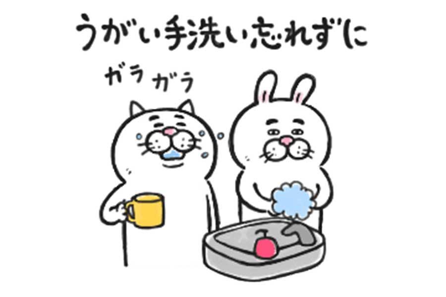 目付きの悪い猫 動く2【画像提供:(C)LINE】