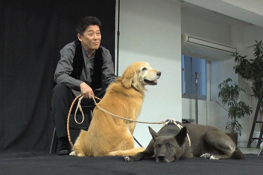 坂上忍と愛犬2匹が「Numero TOKYO」で表紙デビューを飾る【写真:(C)フジテレビ】