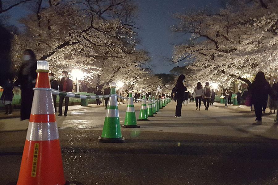 週末の上野公園で花見客が騒乱 桜満開で気の緩み パトロール隊「マスク着けて」
