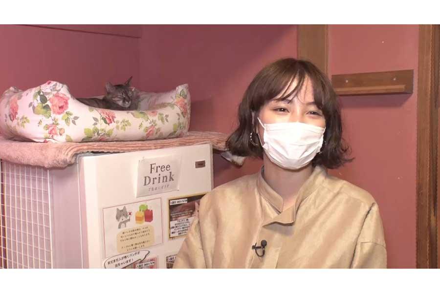 大の猫好き・広瀬すず、人生初の保護猫カフェを訪問「ウズウズしてました」