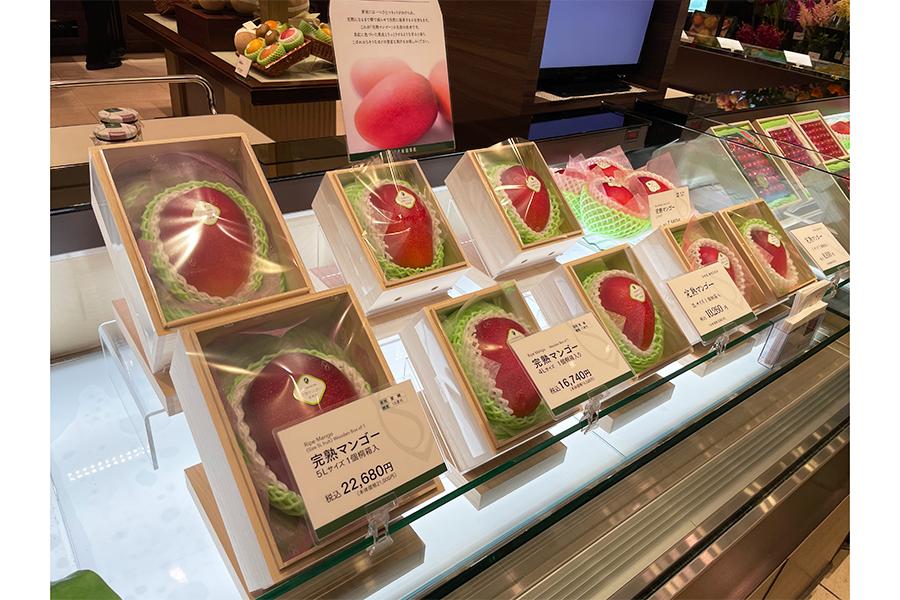 日本橋にある総本店は1階が店舗、2階がレストランになっている。店頭には今が旬のマンゴーも【写真:ENCOUNT編集部】