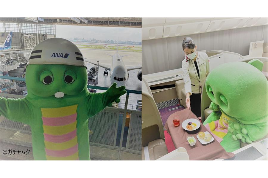 フジテレビ「アクション SDGs ウイーク」開催 ガチャピンが全日空と日本航空を全力取材